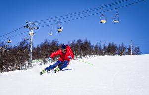 kurtki narciarskie męskie